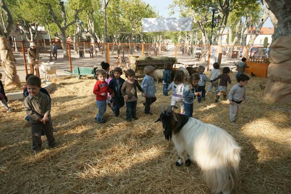 Image 1 - Sur la place des Lices, une ferme très appréciée des enfants