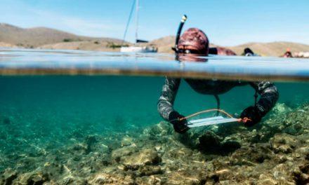 Océanographie : expédition Arctic Mediterranean Mercury le 18/09