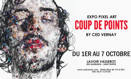 Exposition du Lavoir Vasserot : CED VERNAY