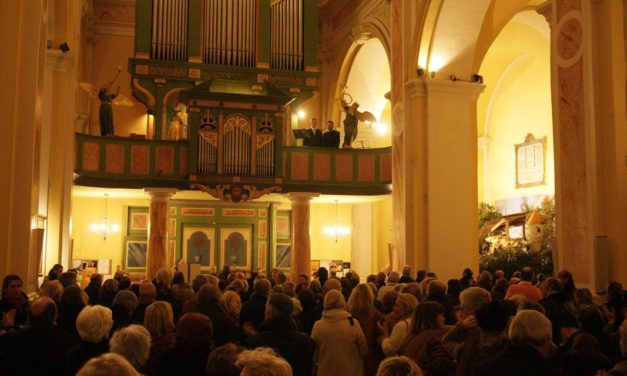 Concert d'orgue, Ludger Lohmann