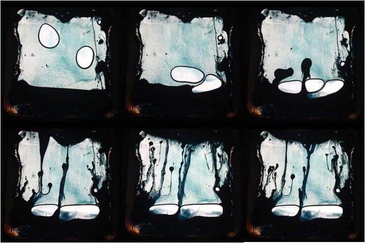 Les expositions du lavoir Vasserot : Franck PAGLIERI